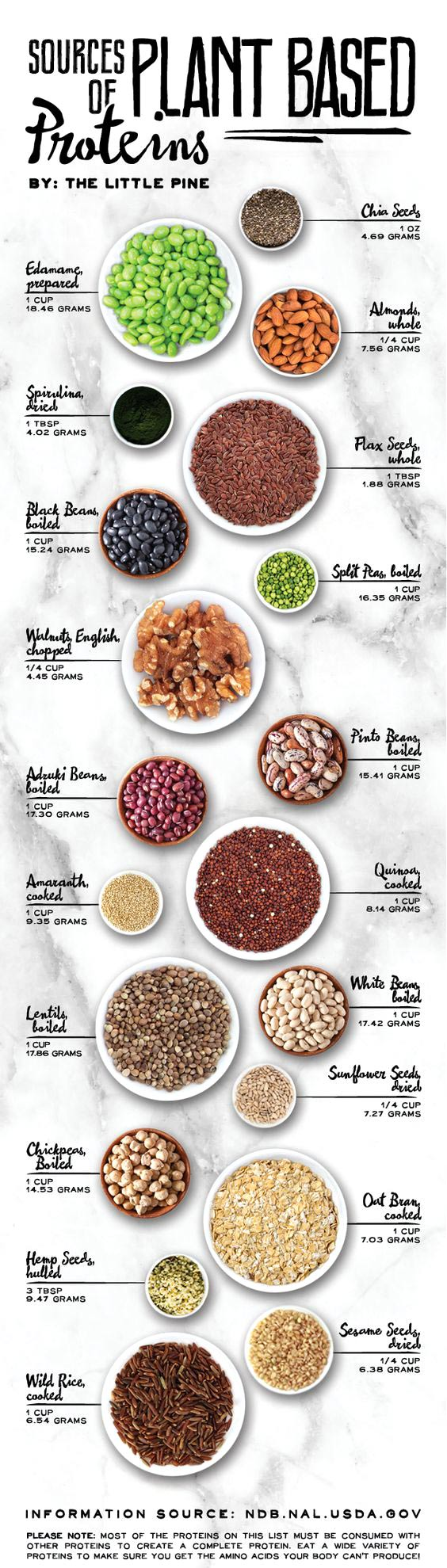 plant-based-proteins