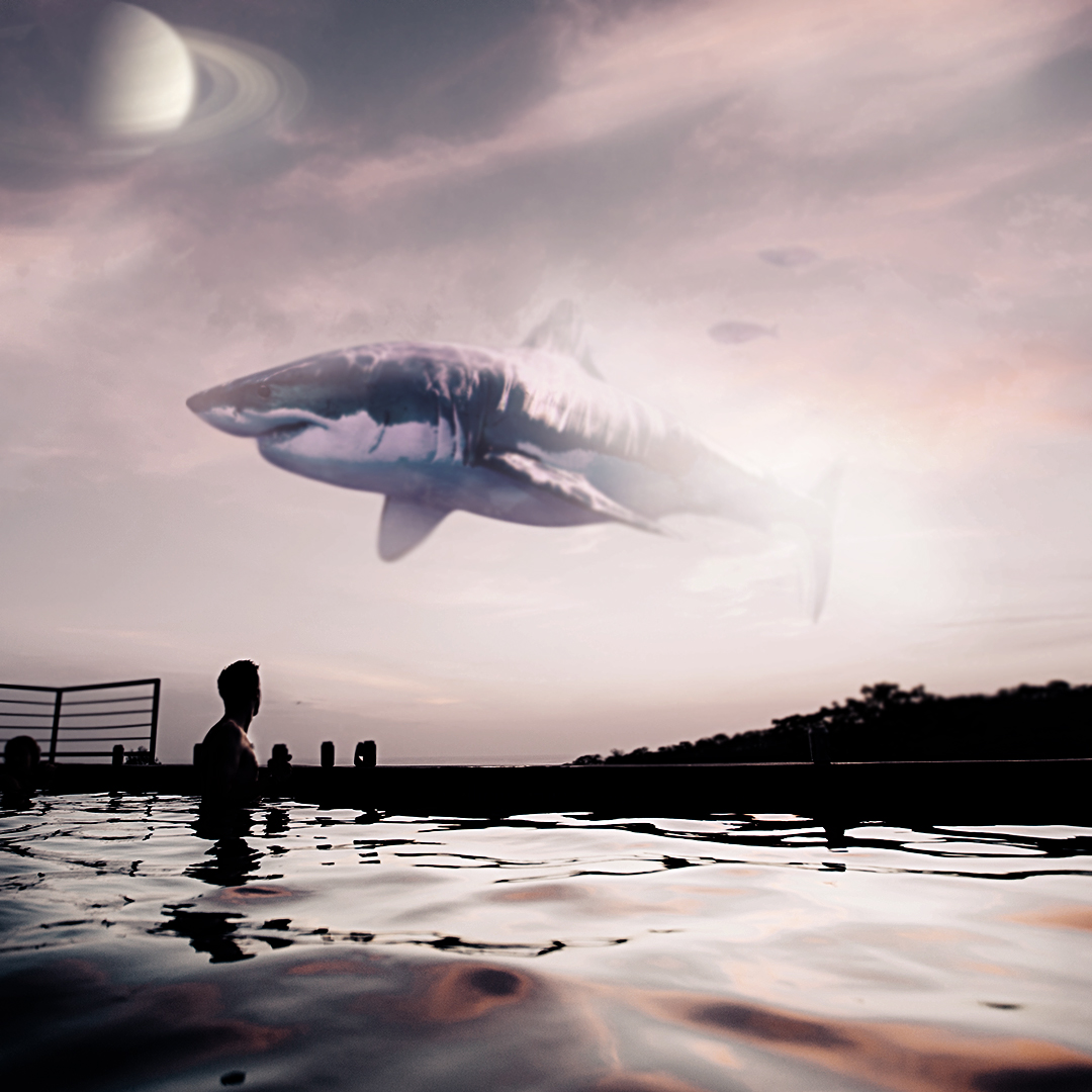 shark.Imagination-is-free-and-effective. Surreal quote. Photoshop manipulation