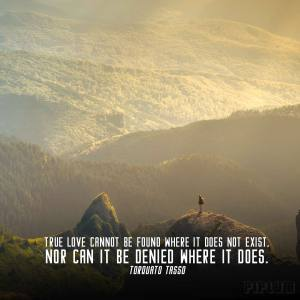inspirational-Love quote. Man or women searching for his love in the mountains.