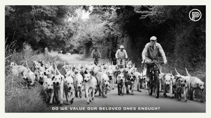 Do-we-value-our-beloved-ones-enough-dog-family-quote