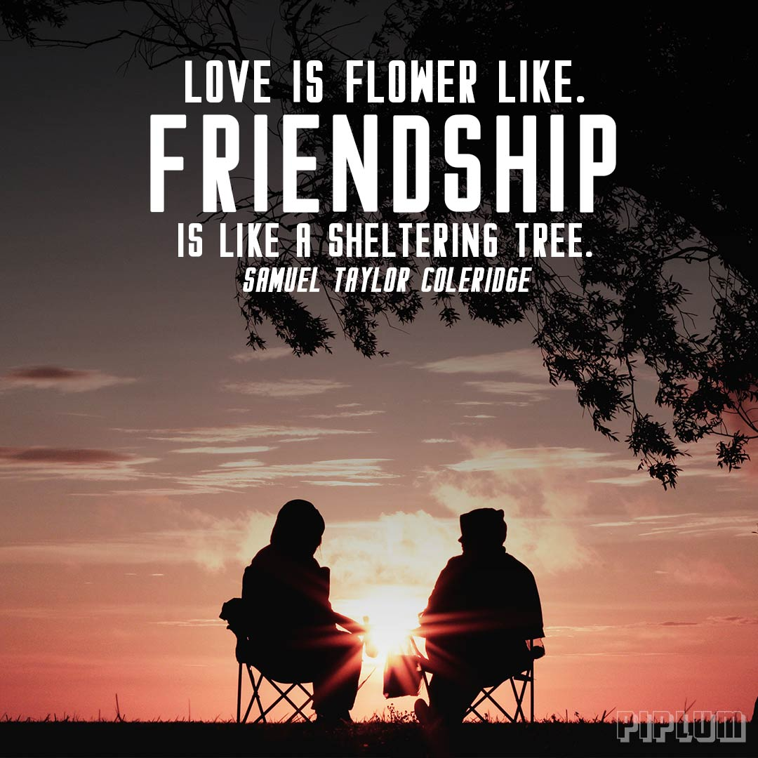 Inspirational Quotes About Friendship Friendship Quotes Archives  Piplum  Home Of Motivational Quotes