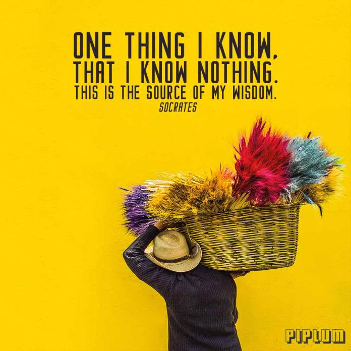 Life quotes. Man carrying colorful flowers in a basket.