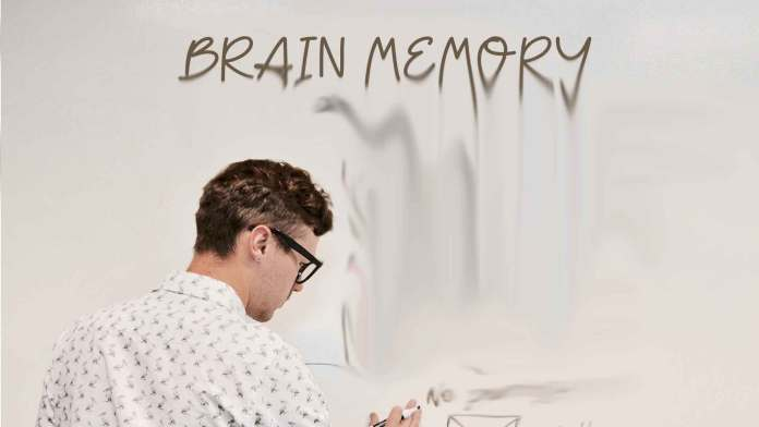 brain-memory-how-to-get-super-memory-often-forget-things