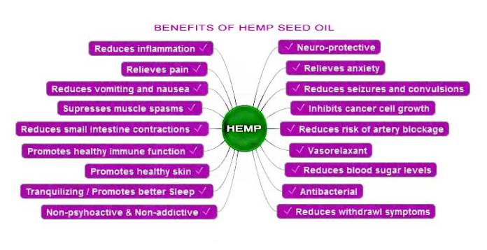 Benefits-of-hemp-seed-oil-chart