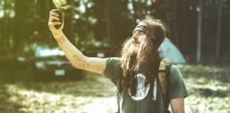 skogran-best-planter-holding-spruce
