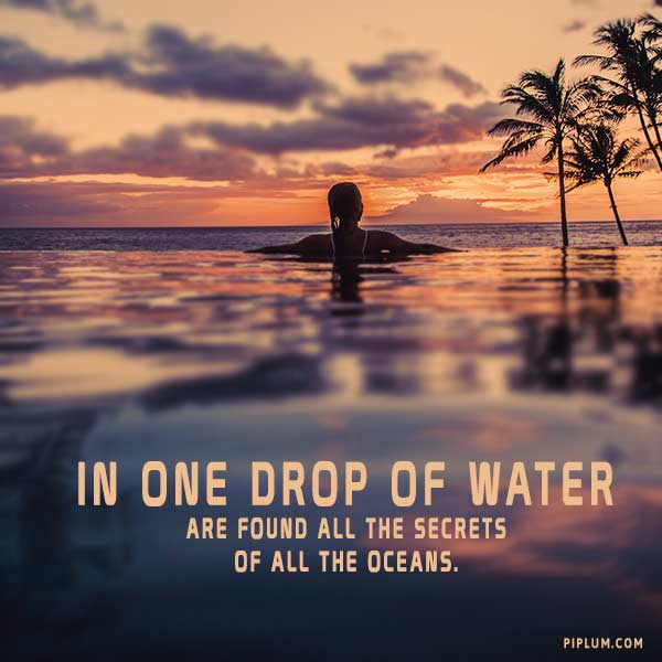 in-one-drop-of-water-are-found-all-the-secrets-of-all-the-oceans-Inspirational-saving-water-quote