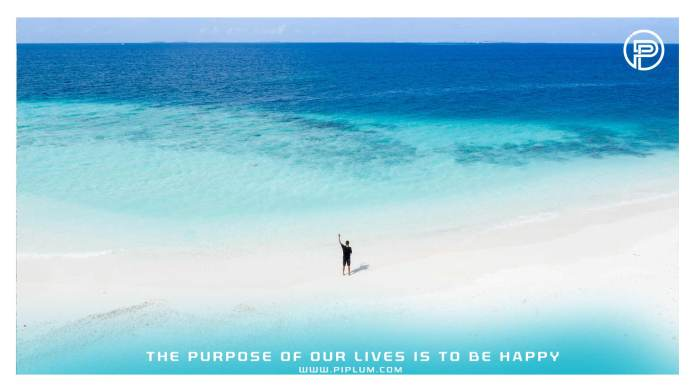 The-purpose-of-our-lives-is-to-be-happy-inspirational-quote-about-life-man-standin-in-ocean-bird-view