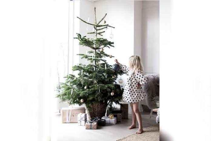 scandinavian-style-photoshoot-for-christmas