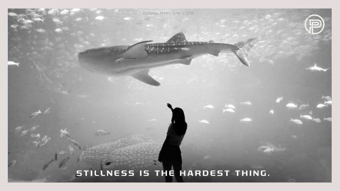 Stillness-is-the-hardest-thing-Motivational-crisis-quote