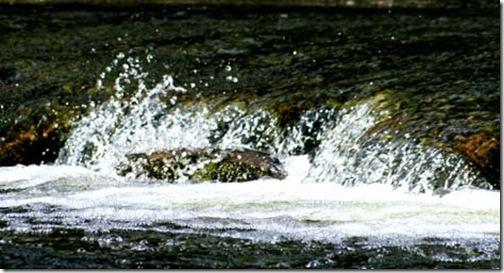 aysgarthfalls_splash