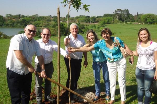 Pira 21 faz contrapartida ambiental com plantio de árvores na Lagoa Santa Rita - Pira21