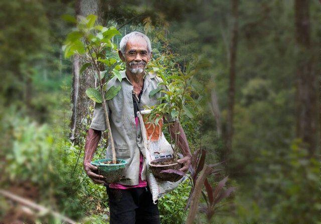 Sosok perintis lingkungan hidup di Wonogiri, Sadiman/solopos.com