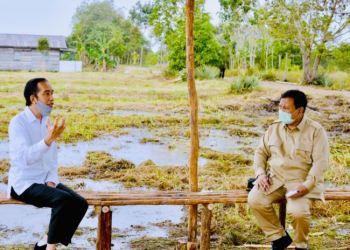 Presiden Jokowi dan Menhan Prabowo Subiyanto di lokasi pengembangan lumbung pangan nasional, Kalimantan Tengah, Kamis, 9 Juli 2020. (Foto: Courtesy/BPMI Setpres)