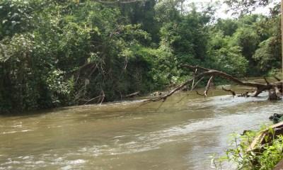Adolescente morreu no Rio Corumbataí - Foto: Reprodução / Juninho Lopes