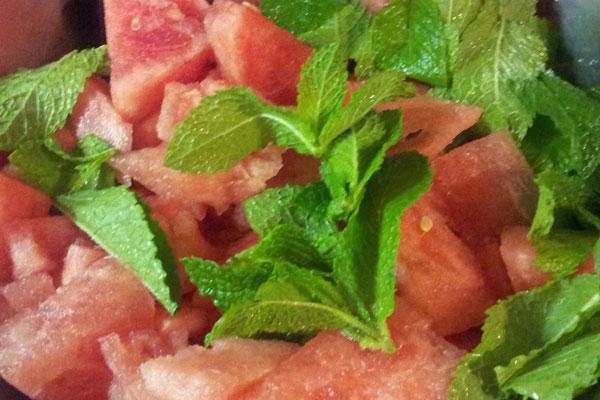 watermelonMint