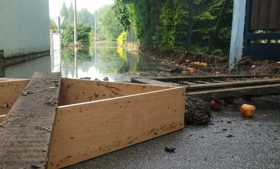Die Stadtverwaltung Pirna informiert, das die Sperrmüllentsorgung nach dem Hochwasser ausschließlich über den Zweckverband Abfallwirtschaft […]