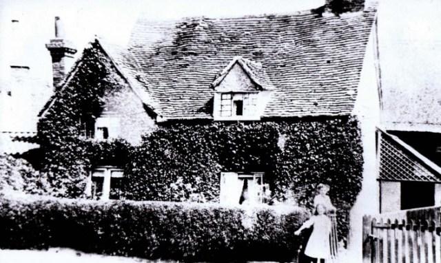 ivy cottagepeople
