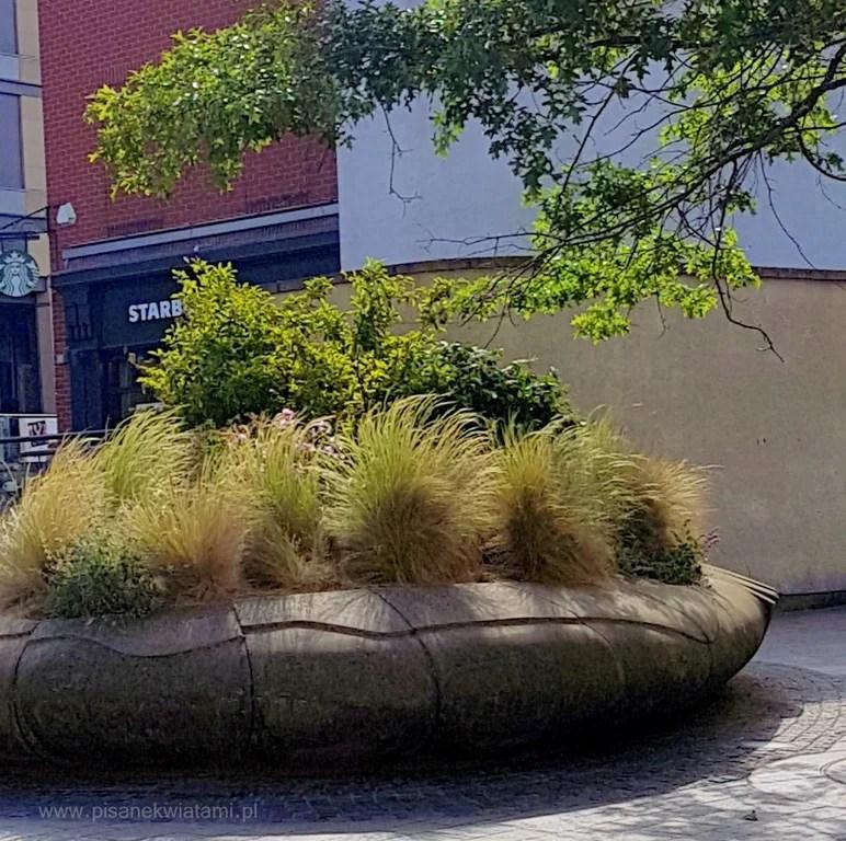 Ogrody pokoju peace gardens