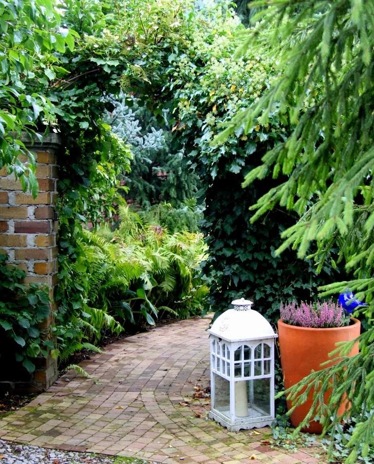 Daglezja Ryki, dni otwarte ogrodu