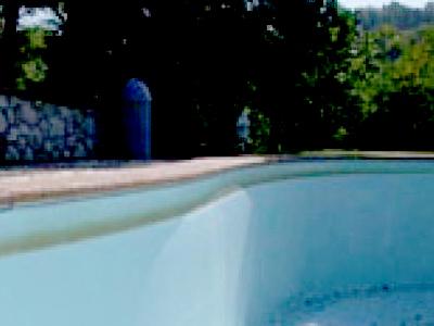 Comment reconnaître lalgue moutarde algue jaune dans la piscine. Ligne D Eau Piscine Jaune Comment Enlever Les Taches Jaunes