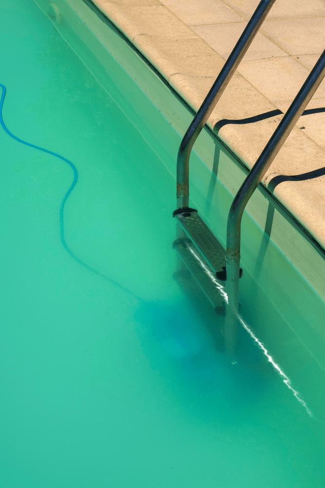 Elles se déposent sur les parois du bassin mais aussi au fond de la piscine. Traitement De L Algue Moutarde Dans Sa Piscine Comment Faire Piscines Ibiza