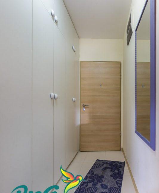 Pisco Real Estate-15