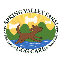 spring-valley-dog-care