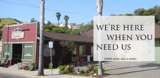We're Here When You Need Us