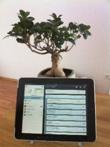 iPad vor Bonsai