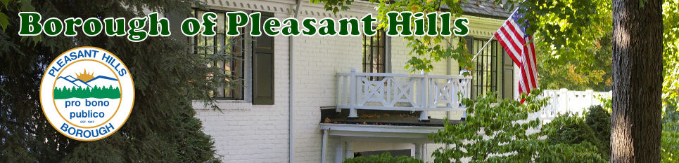 Pittsburgh Suburbs: History Of Pleasant Hills