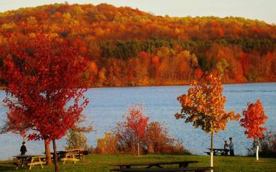 Amazing Places to See Fall Leaves Around Pittsburgh