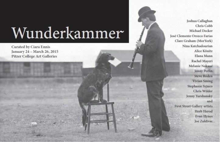 Wunderkammer Catalog Cover