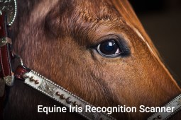Equine Iris Recognition Scanner