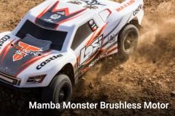 Mamba Monster