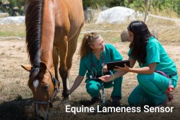 Equine Lameness Sensor