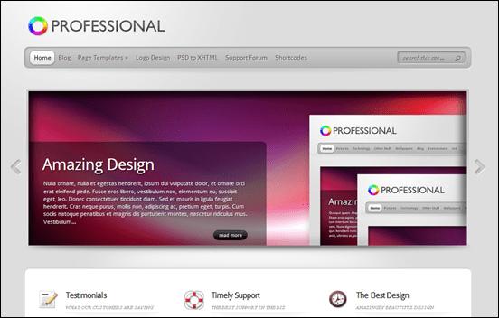 best wordpress themes Professional
