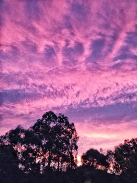 pink sky australia