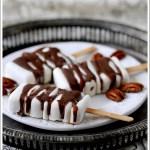Stecco Gelato alla Ricotta con Noci Pecan e Copertura di Cioccolato al Latte