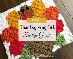 Thanksgiving Crochet A Long