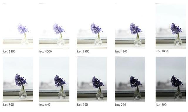 Pillars Of Photography Understanding Iso For Beginners