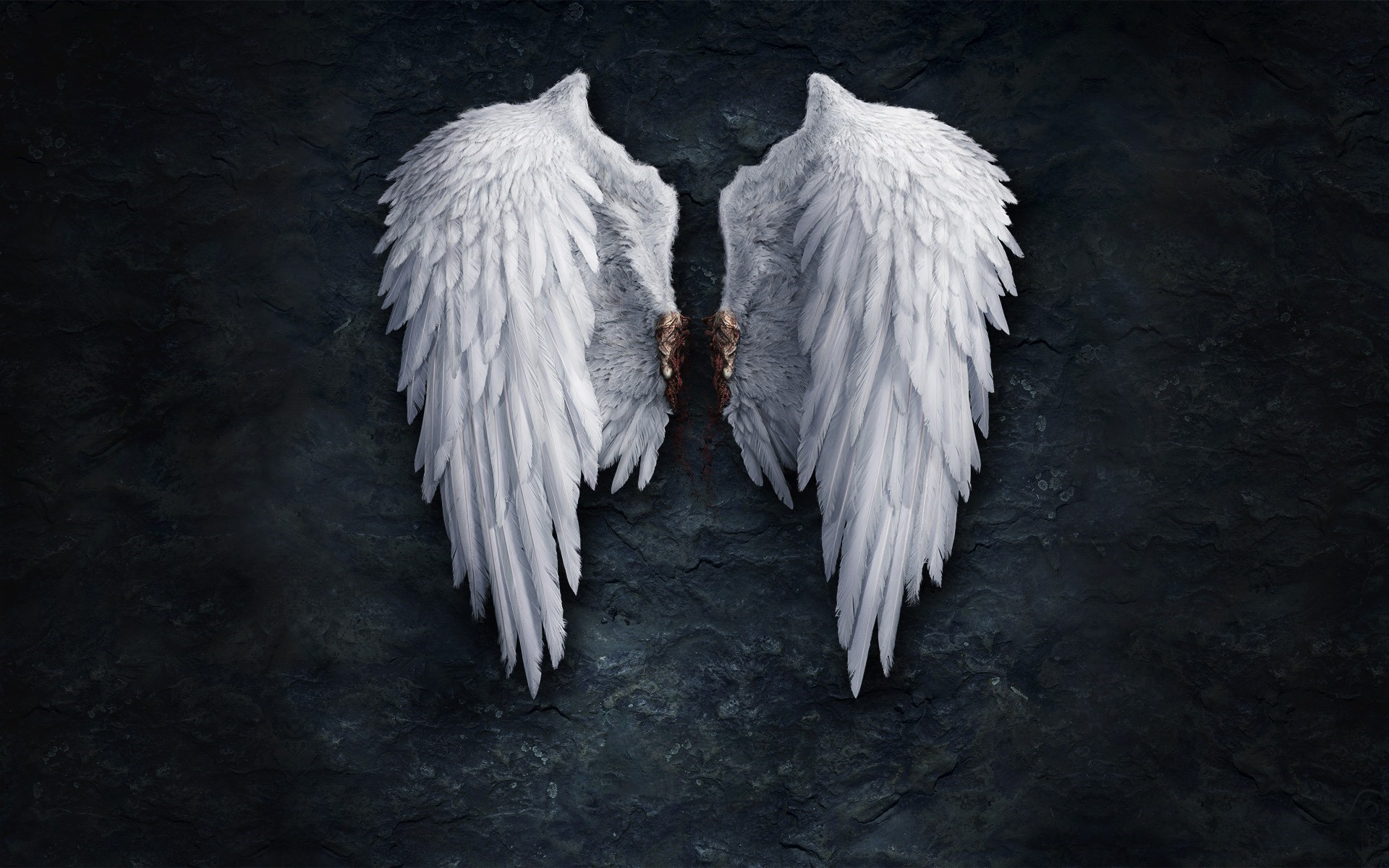 Anime Angel Wings