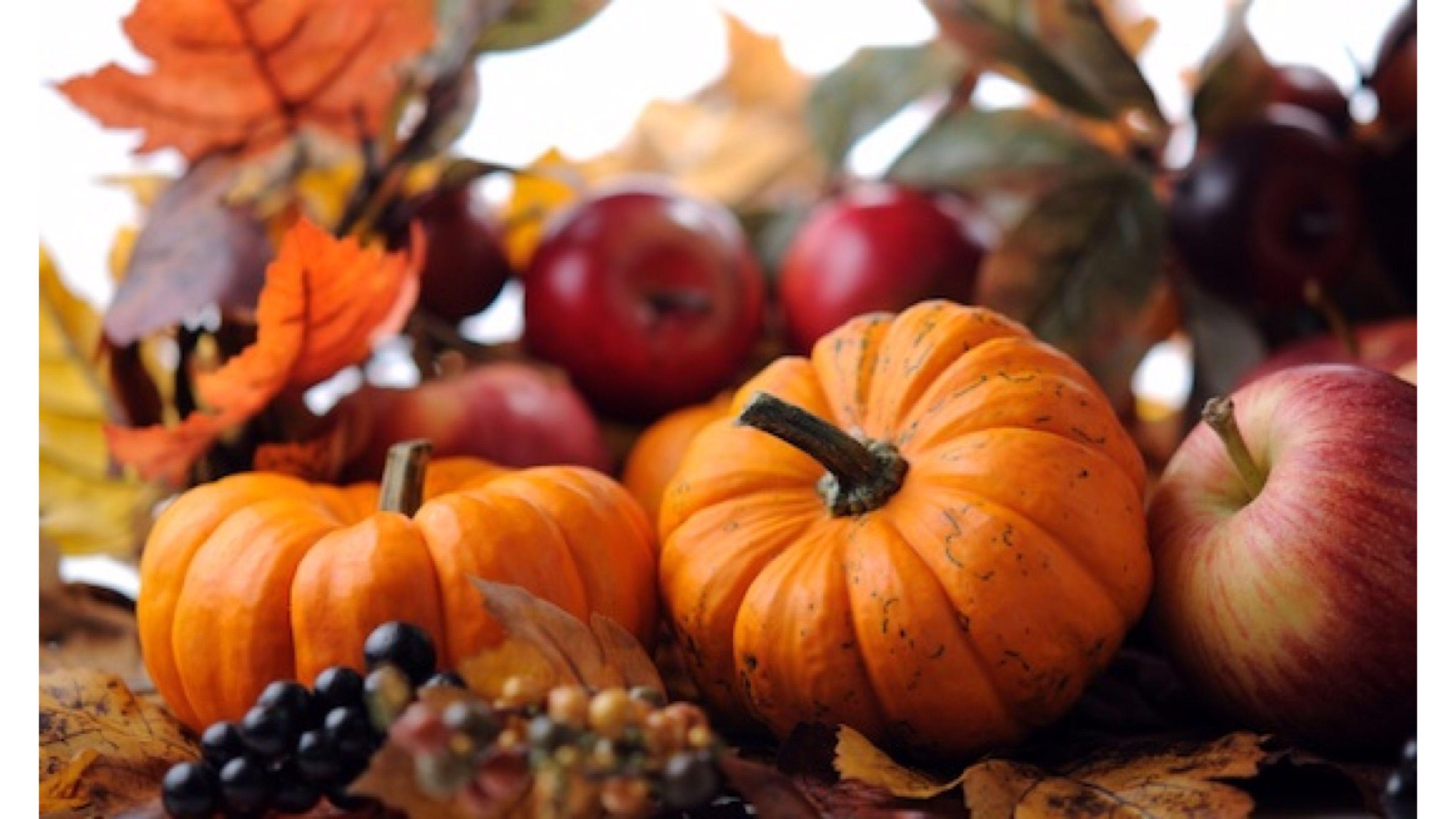 autumn pumpkin wallpaper hd galleryimageco