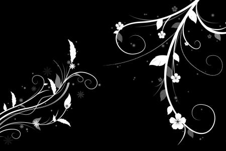 Black and white flower wallpaper hd flower shop near me flower shop background free hd wallpaper floral wallpaper with black background free hd wallpaper free hd black white flower wallpapers designs download black and mightylinksfo