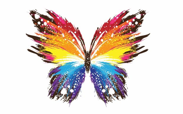 Butterfly abstract colorful patterns 3840x2400.