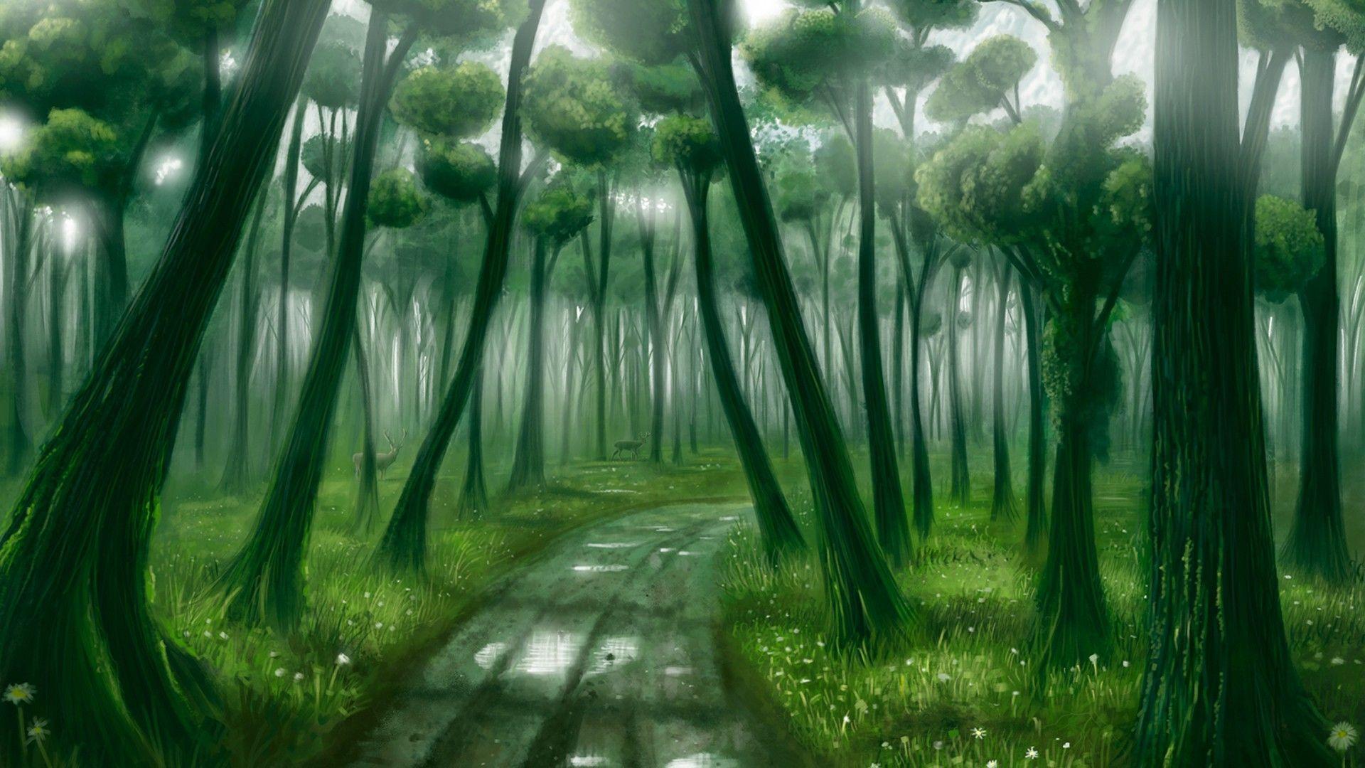forest desktop backgrounds free download | pixelstalk