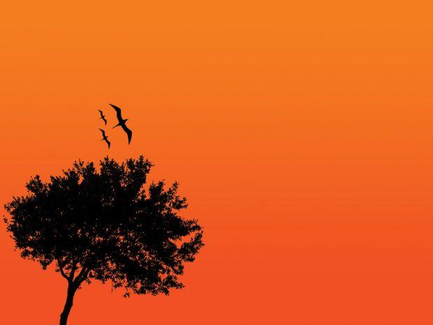 HD Black and Orange Background.