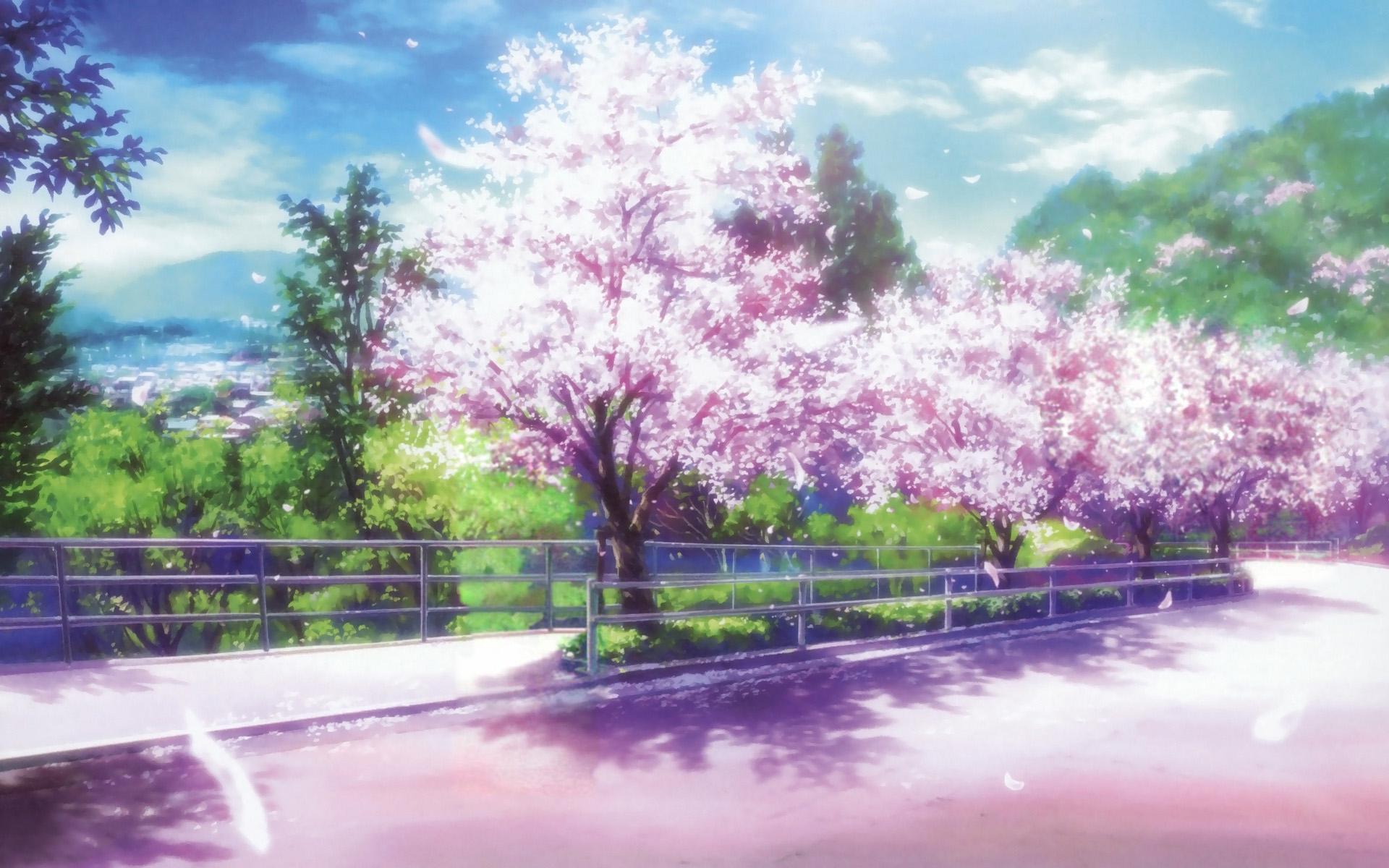 Animated Japanese Cherry Blossom Background