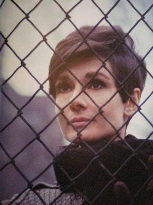 15 Good Audrey Hepburn Pixie Cut Pixie Cut Haircut For