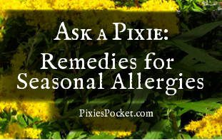 Seasonal Allergies Goldenrod featured image
