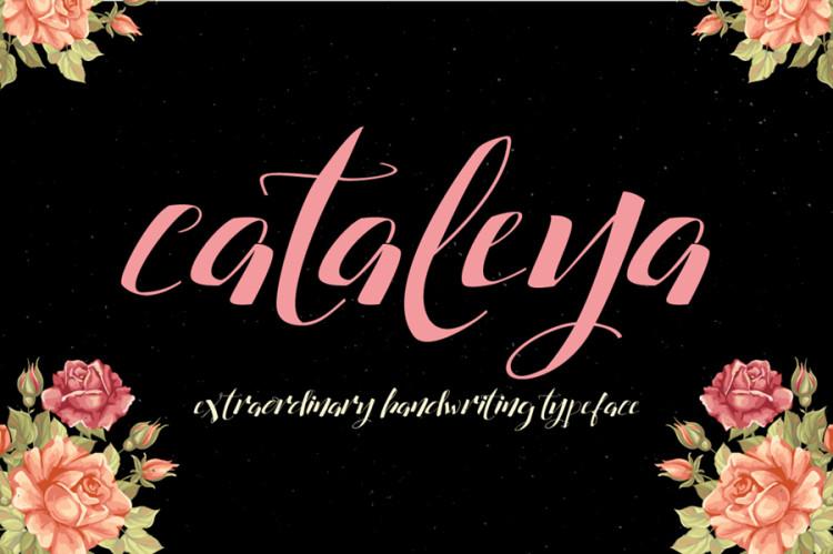 catalleya free font